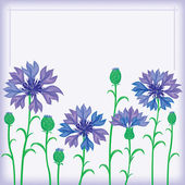 Flower border of cornflowers — Stockvector