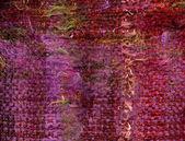 Púrpura que teje — Foto de Stock