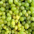 Green table grapes — Stock Photo #3258388