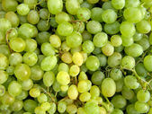 Green table grapes — Stock Photo
