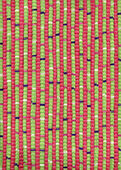 Pink and green striped rug — Stock Photo