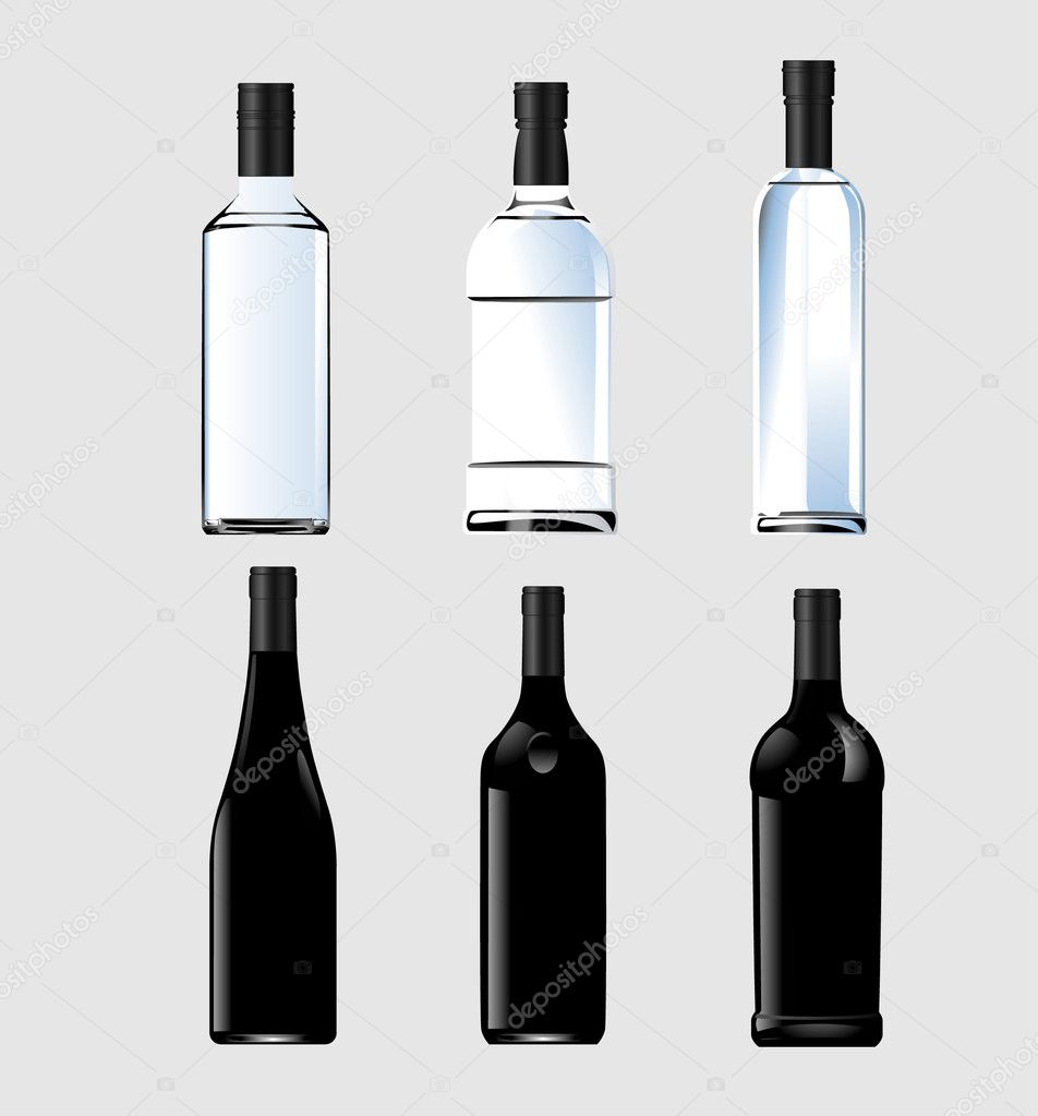 Vector bottles — Stock Vector #3069707