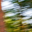 Green blurred background — Stock Photo #3720352