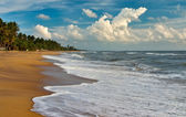 Evening at the Sri Lanka beach — Stock Photo