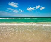 熱帯の海のビーチ — ストック写真