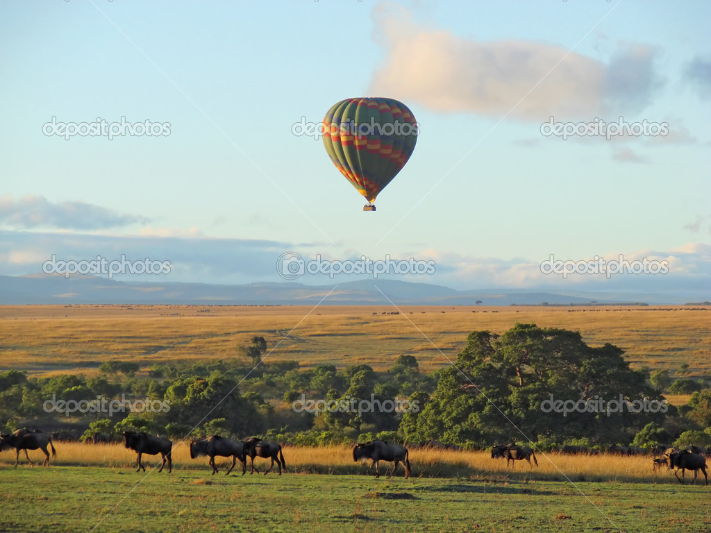 African landscape with hot air balloon ride                  — Stock Photo #3447350