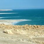 ������, ������: Dead Sea Bay