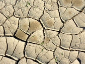 Dry Ground in Negev Desert — Stock Photo