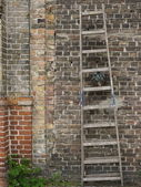 Ladder on brick wall — Stock Photo