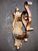 Door knocker-fish — Stock Photo
