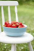 Fresh strawberries in a bowl. — Stock Photo