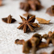 Aromatic star-aniseed — Stock Photo