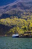 Norway fjord — Stock Photo