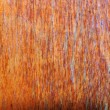 Wood texture background — Stock Photo #3589472
