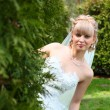 The bride looks out from behind a bush — Stock Photo