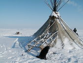 Habitação na tundra de povos do norte da rússia — Foto Stock