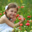 Girl holding a wild poppy in a meadow — Stock Photo