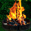 Royalty-Free Stock Photo: Barbecue fire