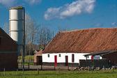 Pastoral farmscape — Stock Photo
