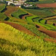 Chinese countryside village (1) — Stock Photo