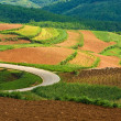Beautiful landscape in yunnan, china (1) — Stock Photo