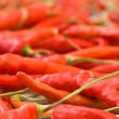 Red peppers - shallow DOF — Stock Photo