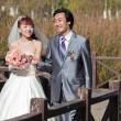 Happy bride and groom on bridge (2) — Stock Photo