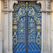 Lavishly embellished doors — Stock Photo #3175546