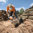 Stock Photo: Cutting logs