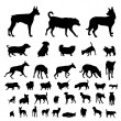 Stock Vector: Dog silhouettes set