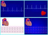 4 Heart& electrocardiogram set — Stock Vector