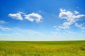 Crystal blue sky — Stock Photo