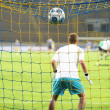 Goalkeeper and ball — Stock Photo