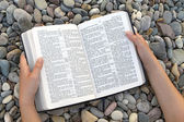 Female hands holding open Bible — Foto de Stock
