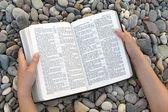 Manos femeninas con biblia abierta — Foto de Stock
