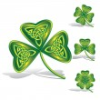Green shamrocks with celtic knots — Stock Vector