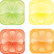 Citrus — Vector de stock #3175398