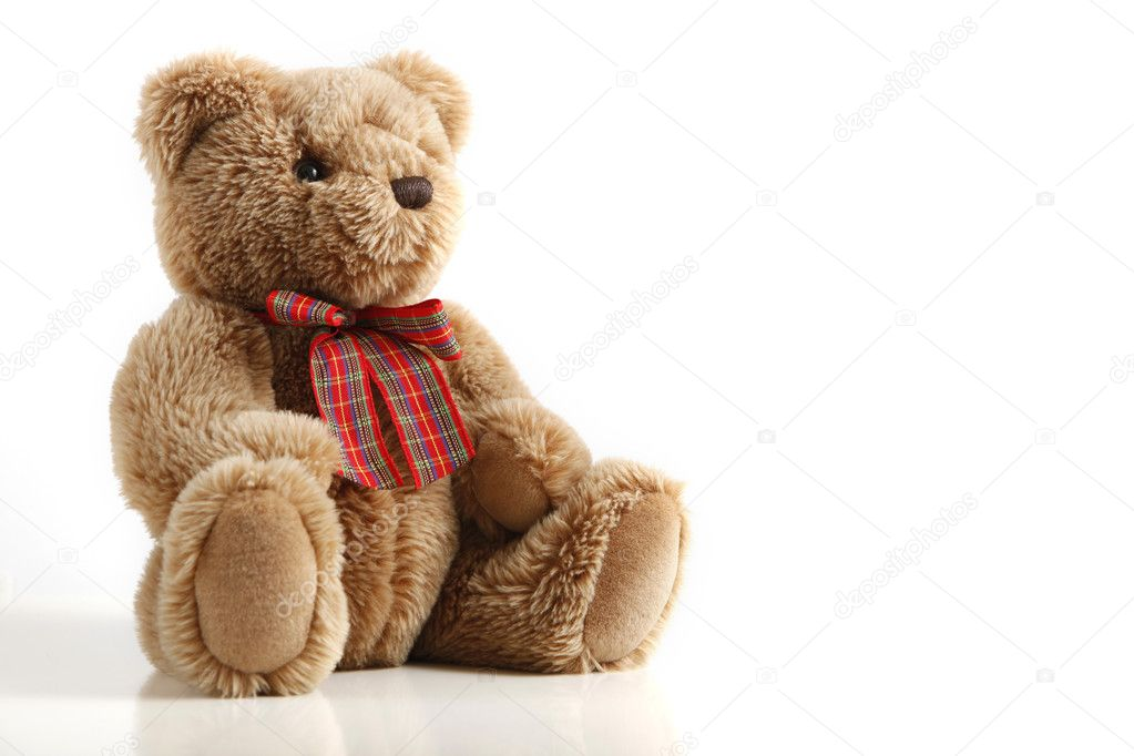 A fluffy teddy bear isolated on white background. — Stock Photo #3207311