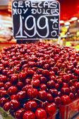 Cerezas — Foto de Stock
