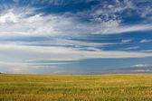 阴沉的乌云下的风景 — 图库照片