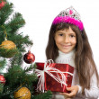 Royalty-Free Stock Photo: The girl with a New Year tree