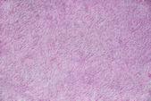 Violet texture — Stock Photo
