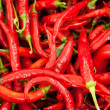 Hot chili pepper - Stock Photo