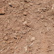 Dirt Background — Stock Photo #3156661