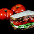 BLT Sandwich, Tomatoes, Isolated — Stock Photo