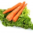 Carrots and Lettuce Isolated — Stock Photo