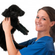 Veterinary Assistant Holding Pet Dog Isolated - Stock Photo