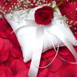 Red Rose on Ring Bearer's Pillow — Stock Photo