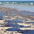 Oil Spill on Beach — Stock Photo