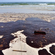 Oil Spill on Beach - Stock Photo